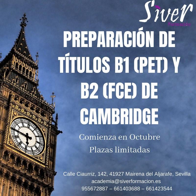PREPARACIÓN EXÁMENES CAMBRIDGE Y APTIS