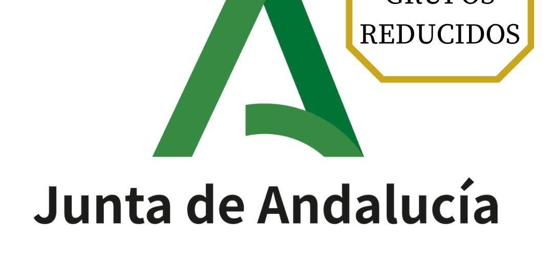 CURSO INTENSIVO INFORMÁTICA C2.1000 JUNTA DE ANDALUCÍA